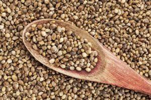 Hemp-Seed-The-Benefits-Nutritional-Value.jpg
